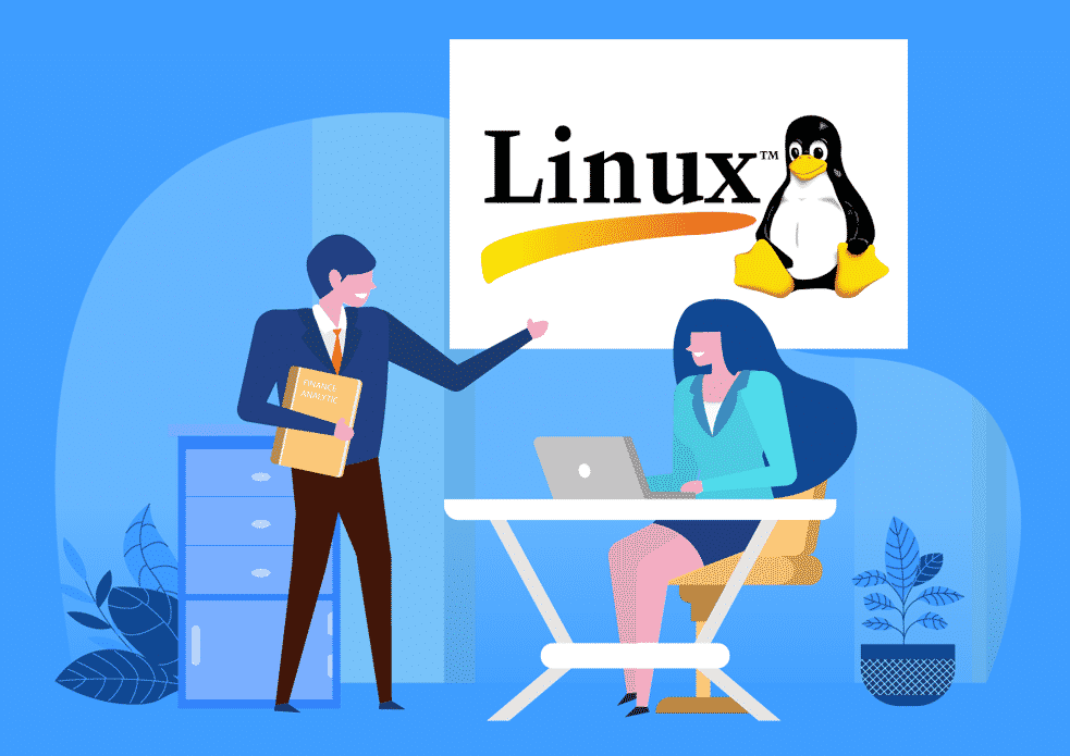 Linux consultant resolving business computer problems for commercial client.